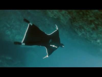 Expérience de vol sous-marine