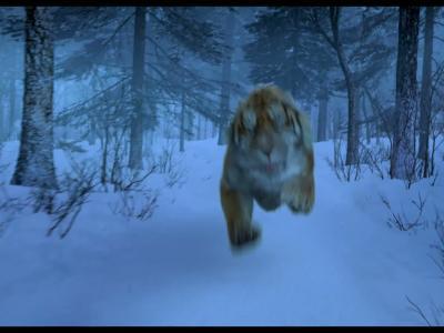 La Bataille de la Montagne du Tigre - Bande Annonce