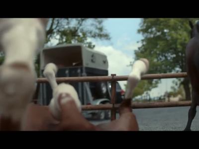 Les chevaux rigolent moins avec le ''trailer assist'' de Volkswagen