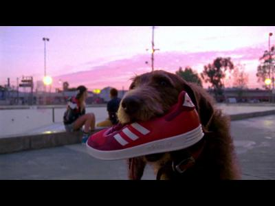Adidas mixe les styles