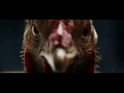 Mercedes contrôle des poulets à la télé
