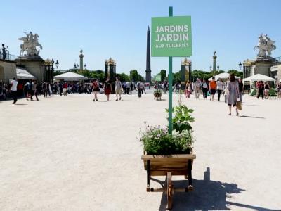 Vidéos : Jardins, jardin 2015