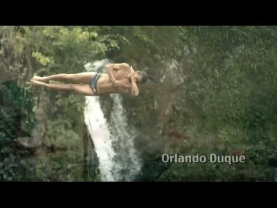Plongeon depuis les arbres amazoniens