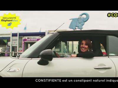 Constifiente : l'Elephant Bleu constipe les pigeons pour protéger votre voiture
