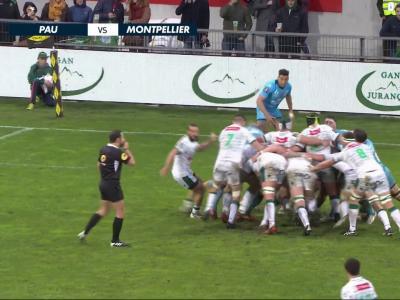 Section Paloise - Montpellier : résumé et essais du match en vidéo