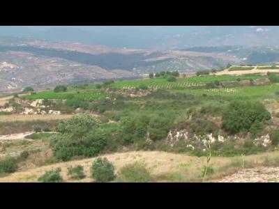 A côté des plages paradisiaques, la route des vinschypriotes