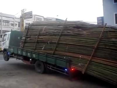 Décharger rapidement des tonnes de bambous, la méthode taïwanaise