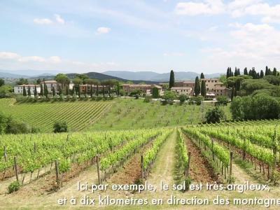 Escapade [S07E08] Sur les terres du chianti classico