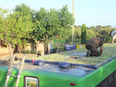 Le toit des bus de Madrid deviennent des jardins