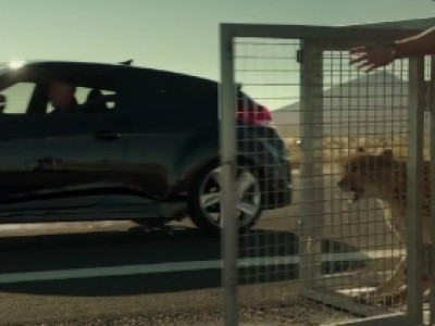 Le Hyundai Veloster Turbo met un guépard au défi