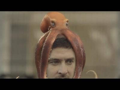 La pieuvre, meilleure amie de l'homme ou d'un ... 4x4