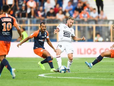 Stade Rennais - Montpellier : le bilan des Rennais à domicile