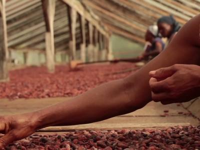 Gastron'homme [S09E03] Diogo Vaz : du chocolat bio et éco-responsable venu d'Afrique