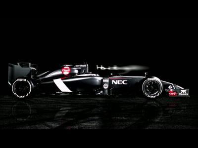 Formule 1 2014 : il va falloir s'y faire