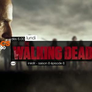 The Walking Dead - saison 8 : trailer de l'épisode 8 (VOST)