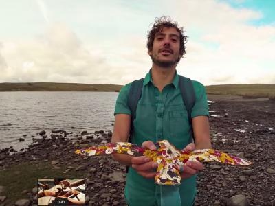 Laurent Lamarca - Le vol des cygnes