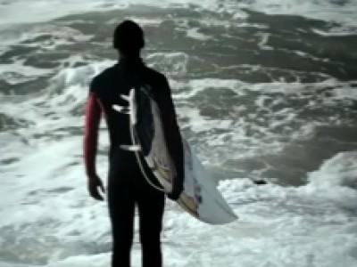 Des requins et du surf