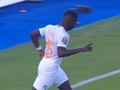 CAN 2019 : le but de Gradel lors de Côte d'Ivoire - Namibie