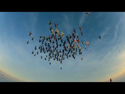 Le record du monde de chute libre