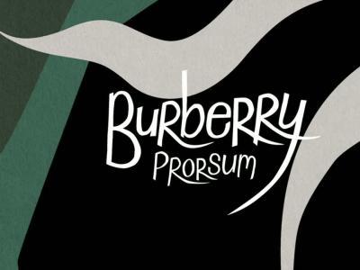 Défilé Burberry Prorsum Hommes Printemps-été 2015