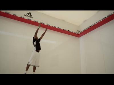 Un saut avec Derrick Rose
