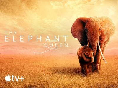 The Elephant Queen - Apple TV+