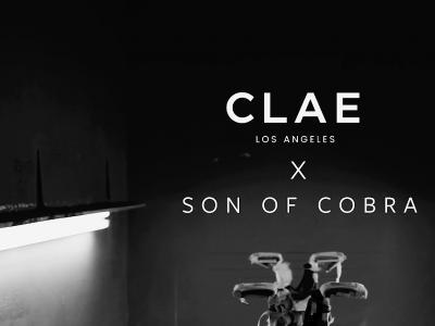Clae x Son of Cobra