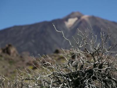 Escapade [SE03] Nous vous emmenons au nord de Tenerife, à couper le souffle !