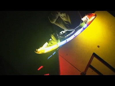 Un Wakeboard lumineux