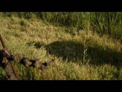 Star Trek : Picard - 1ère bande-annonce pour la série Amazon Prime Video
