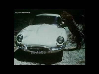 La Jaguar Type E fête ses 50 ans