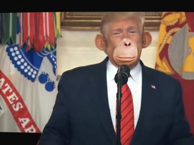 Shaka Ponk - Funky Junky Monkey