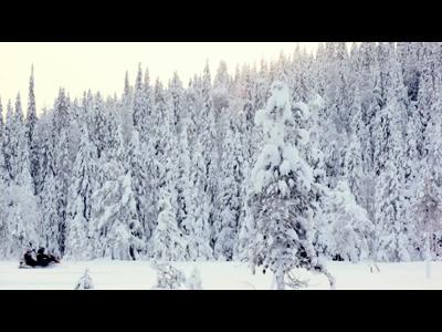 C'est en Laponie que ça se passe